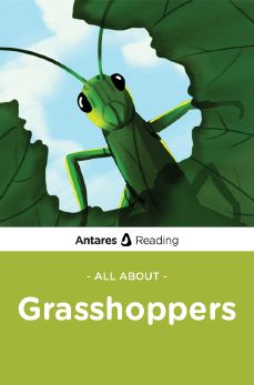 All About Grasshoppers, Antares Reading
