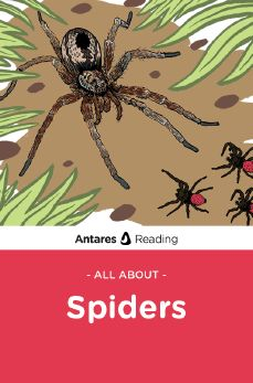 All About Spiders, Antares Reading