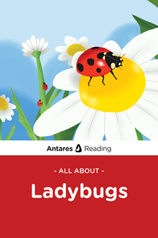 All About Ladybugs, Antares Reading