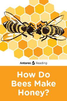 How Do Bees Make Honey?, Antares Reading