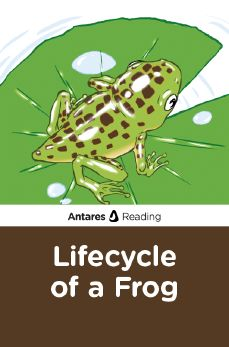 Lifecycle of a Frog, Antares Reading