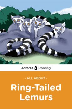All About Ring-Tailed Lemurs, Antares Reading