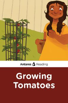 Growing Tomatoes, Antares Reading