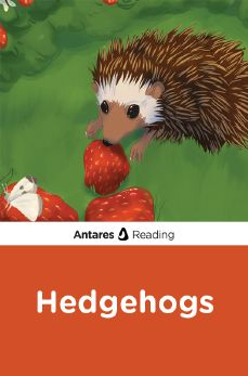 Hedgehogs, Antares Reading