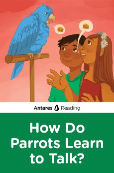 How Do Parrots Learn to Talk?, Antares Reading