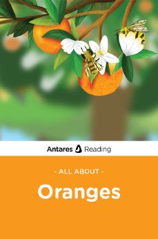 All About Oranges, Antares Reading