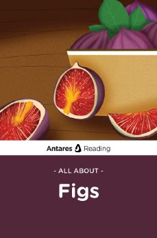 All About Figs, Antares Reading