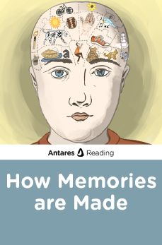 How Memories are Made, Antares Reading
