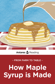 From the Farm to You: How Maple Syrup is Made, Antares Reading