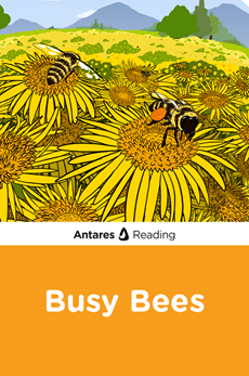 Busy Bees, Antares Reading