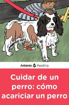 Cuidar de un perro: cómo acariciar un perro, Antares Reading