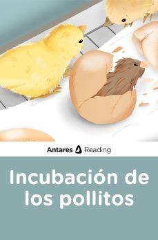 Incubación de los pollitos, Antares Reading